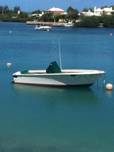 Boat & Mooring For Sale