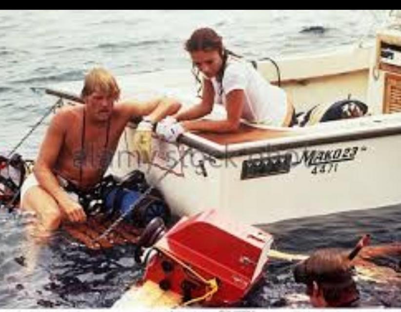 1977 Mako 23 - Inboard Diesel - Reduced - $16.5k OBO