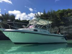 Boston Whaler Conquest 235