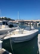 FOR SALE – 21ft Wellcraft, Bowrider