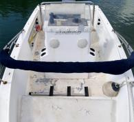 18' Sunbird with 125 Mercury outboard