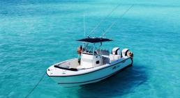 Pursuit 25ft Center Console