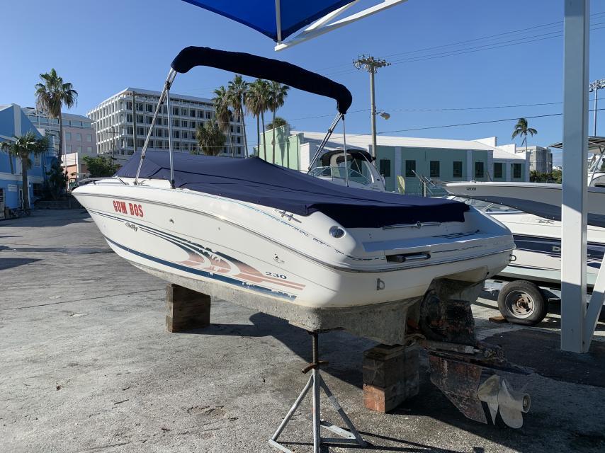 Sea Ray Project Boat
