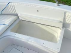 Center Console 4 stroke SOLD