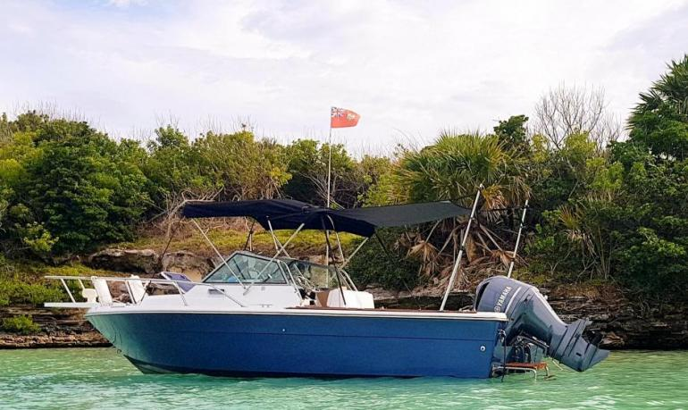 EXCELLENT-TURNKEY- Boat for Sale